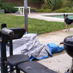 Old outdoor bench press