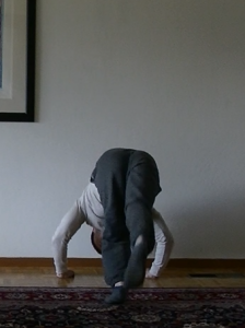 the wall handstand pushup  tutorials and progressions